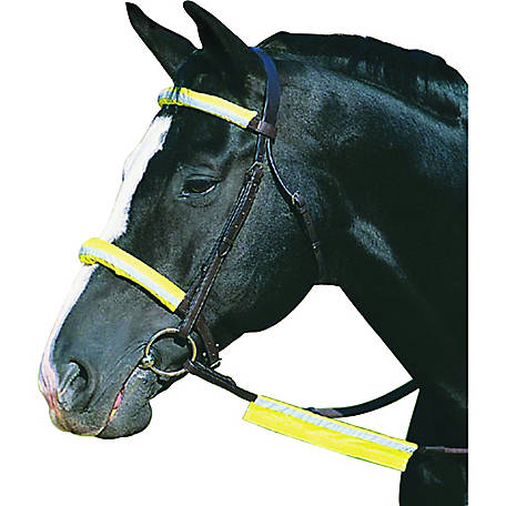 Roma Reflective Bridle Kit