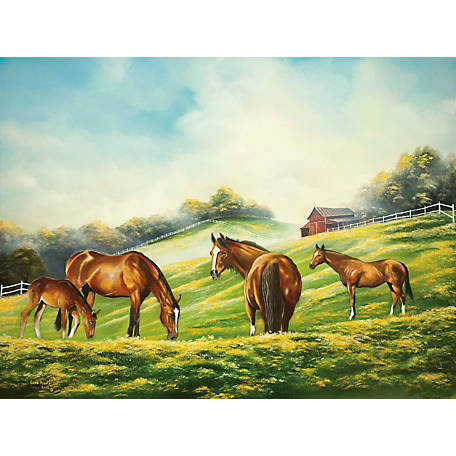 Birchwood Trading Lake Towel Horse Field