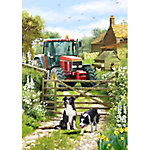 Birchwood Trading Lake Towel Tractor Dogs, 98333