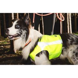 Shop Hurtta Active Apparel for Pets at Tractor Supply Co.