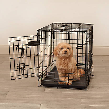 Pet Sentinel 20 in. x 17 in. x 24 in. Small Wire Pet Crate, 530055