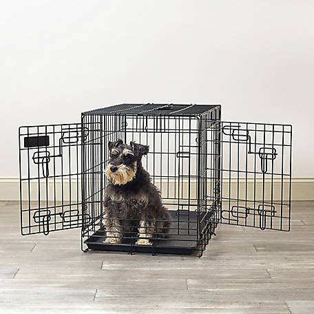 Pet Sentinel 21 x 19 x 30 Medium Wire Pet Crate, 530062