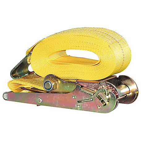 Buyers Products 3 in. x 27 ft. Ratchet Strap with Flat Hooks