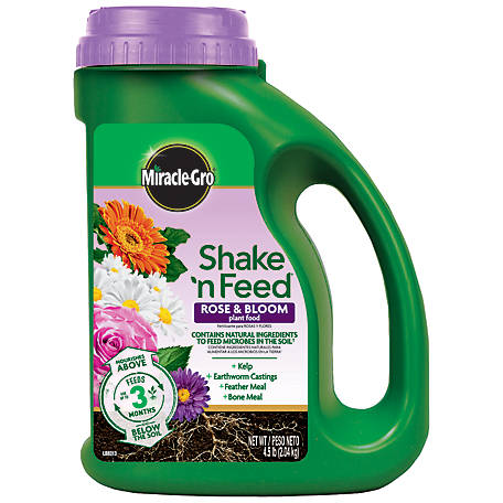 Miracle-Gro Shake 'N Feed Rose & Bloom Plant Food 4.5 lb., 3002210