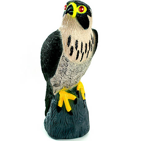 Bird-X Peregrine Falcon Decoy