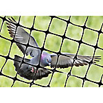 Bird-X Heavy-Duty Plastic Bird Netting, 100 ft. x 14 ft. Roll