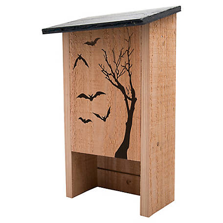 S K Cedar 50 Plus Bat House