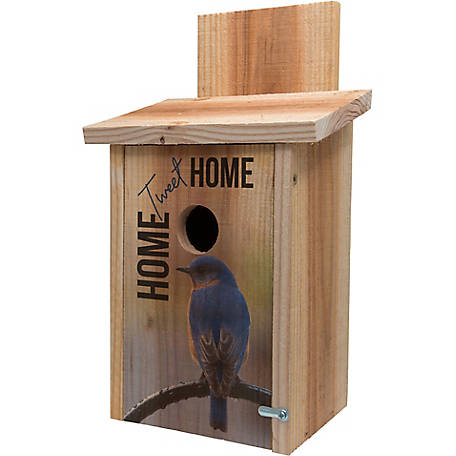 S&K Cedar Blue Bird House with Decorative Home Tweet Home Design
