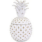 Brianna Large Pineapple Box
