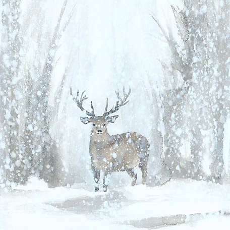 Designs Direct Deer In Winter Wonderland 20 In X 20 In Canvas Wall Art At Tractor Supply Co