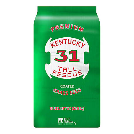 DLF Kentucky 31 Tall Fescue, 50 lb.