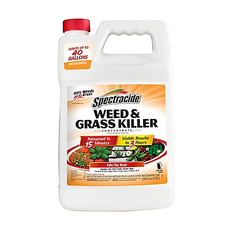Spectracide Weed and Grass Killer Concentrate - 1 gal.