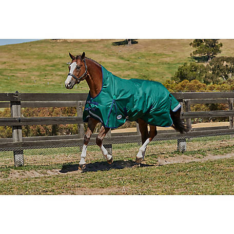 WeatherBeeta Comfitec Plus Dynamic, High Neck, Medium