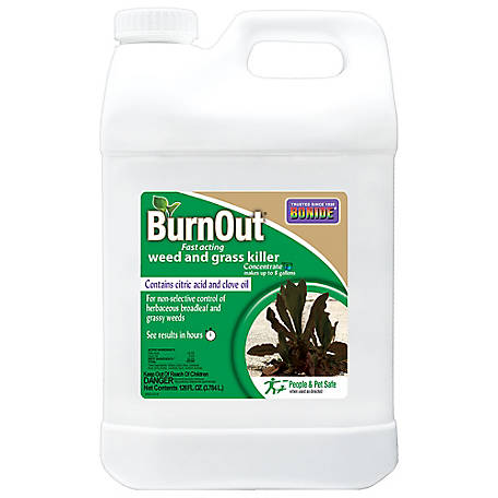 Bonide 2.5 gal. BurnOut Fast-Acting Weed & Grass Killer Concentrate, 7466