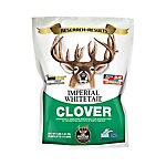 Whitetail Institute Imperial Whitetail Clover, IMP4