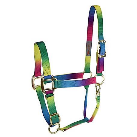 DuMOR Premium Halter Rainbow, Medium, 1224651