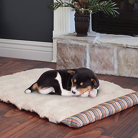 Petmaker 24 in. x 37 in. Roll Up Travel Portable Dog Bed
