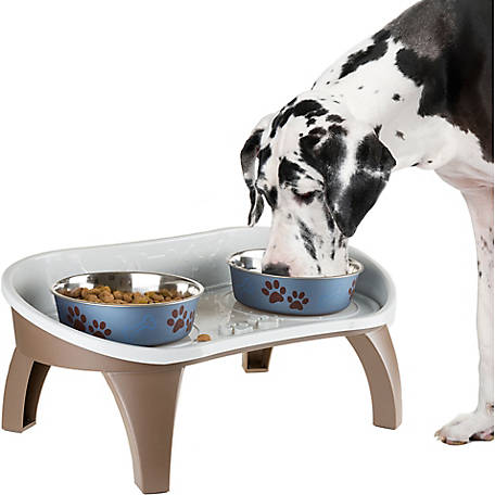 Petmaker Elevated Pet Feeding Tray with Splash Guard And Non-Skid Feet, 21 in. x 11 in. x 8.5 in.