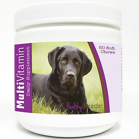 Healthy Breeds Labrador Retriever Multi-Vitamin Soft Chews, Pack of 60
