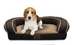 Shop American Kennel Club Dog Beds at Tractor Supply Co.