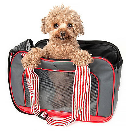Pet Life Candy Cane Fashion Pet Carrier