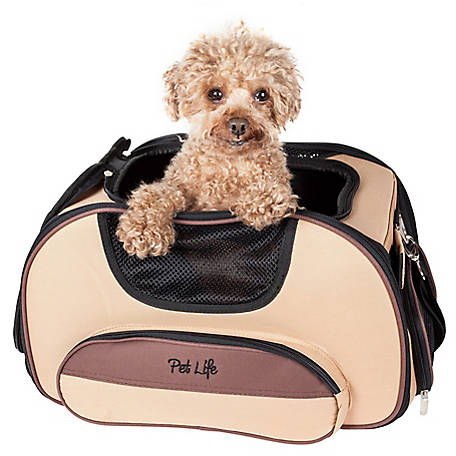 Pet Life Airline-Approved Sky-Max Modern Collapsible Pet Carrier