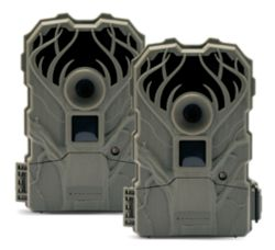 Shop 2 pk. Stealth Cam 12MP Trail Cameras at Tractor Supply Co.
