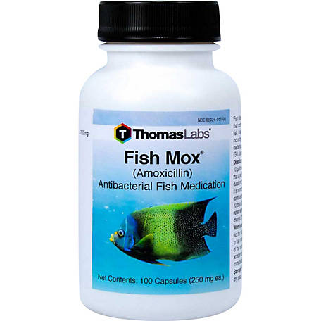 Thomas Labs Fish Mox Amoxicillin, 250mg, 100 ct