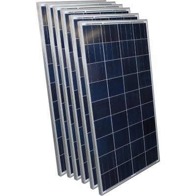 Buy AIMS Power 250W Polycrystalline Aluminum Frame Solar Panel; Pack of 6 Online