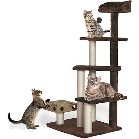 FurHaven Cat Furniture Play Stairs with Cat-IQ Busy Box