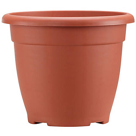 Red Shed 8 in. Basic Planter