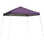 Quik Shade Canopy Screen Kit for WE100 C100 SX100 Canopies