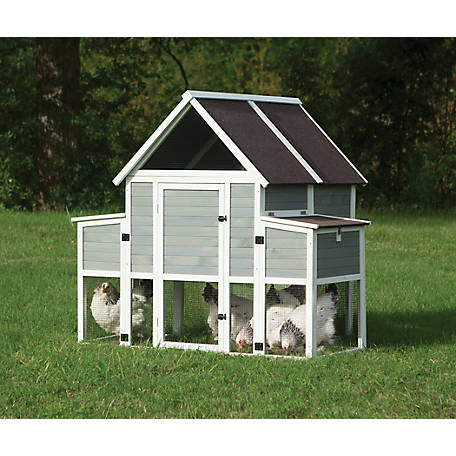 Precision Roosting Ladder Chicken Coop, 40121D