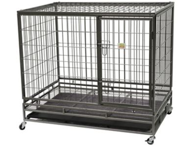 pet frame with heavy duty wire
