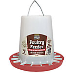 Flock Party Feeder Chick 7 lb. Dusty Rose, 1030299