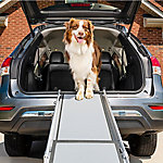 PetSafe Dlx Telescoping Pet Ramp