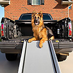 PetSafe Deluxe Telescoping Ramp Extra Large