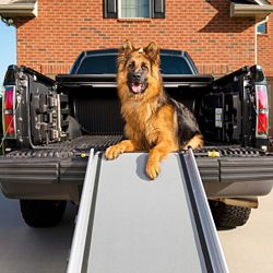 Shop Deluxe XL Telescoping Ramp at Tractor Supply Co.