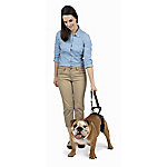 PetSafe CareLift Rear Only Harness