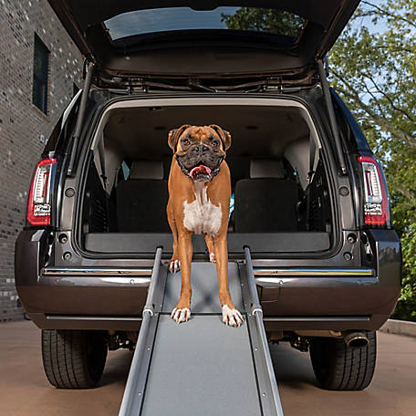 PetSafe Tri-Scope Ramp