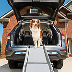 PetSafe Deluxe Telescoping Ramp Kraft Box