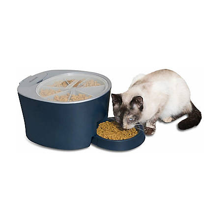 PetSafe Six Meal Feeder, PFD00-15956