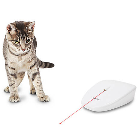 PetSafe Laser Tail