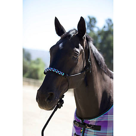 Kensington Clinician Style Rope Halter with 12 ft. Adjustable Rope Halter, KRH106