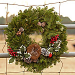 Cottage Farms Direct Fresh Cut Christmas 24 in. Forester Evergreen Wreath - Cottage Hill