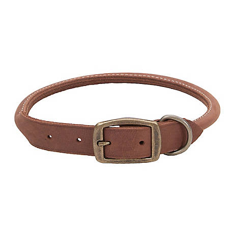 Retriever Rustic Leather Round Dog Collar