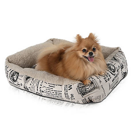 Paws & Pals Newspaper Style Plush Pet Bed, PTBD-N01-LG