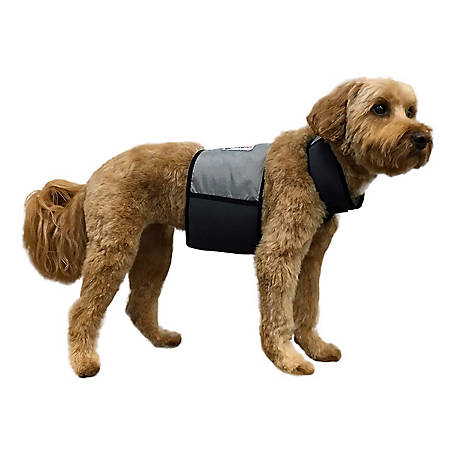 CoolerDog Cooling Vestcollar, CDVCXS-GY