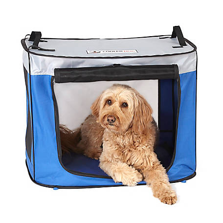 CoolerDog Pupup Shade Oasis, Medium, CDPSO-MD
