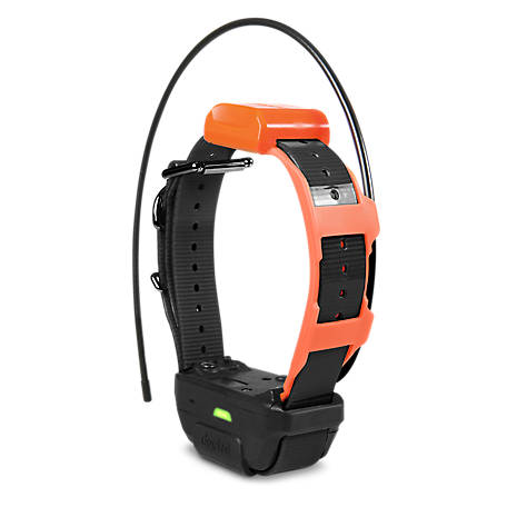 Dogtra PATHFINDER TRX RX, GPS Tracking Trainer